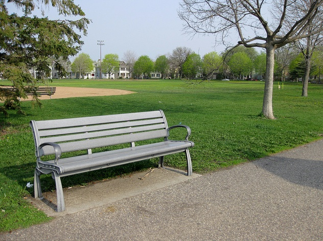 A bench at Logan Park