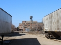 Freight trains in foreground and older brick building in background